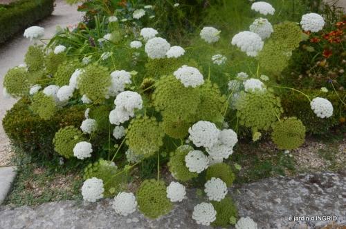 orage,puces,bouquet,Anniv.Ines,Brantome,Jardins d'eau 168.JPG
