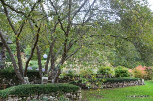 la Sedelle,étang de Riault,cyclamens 092.jpg