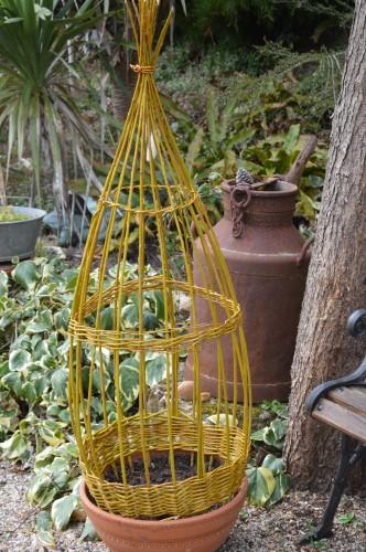 les euphorbes,jacinthes,jonquilles,forsythia,cognassier du japon,coronille,cardamine,magnolia,coucou,mahonia,érable