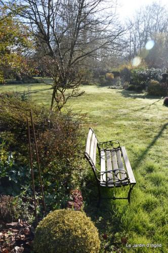 bouquet mamy,jacinthes,semis,jardin 035.JPG