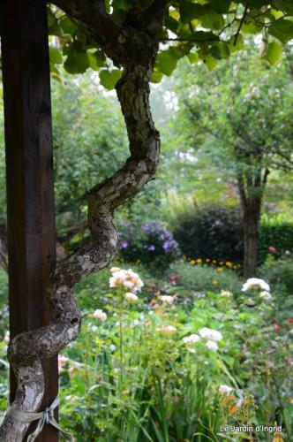 tournesols,pt jardin,nénuphard,libellules,lavande bouquet,carava 034-001.JPG