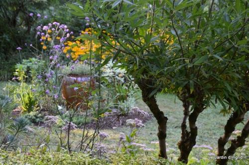 mon coin,Monique,les oies,mon jardin 049.JPG