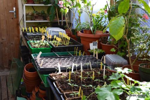 tour du jardin printemps 004-001.JPG