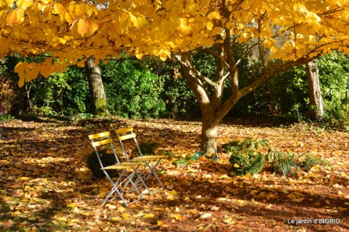 troc,automne,serre 075.JPG