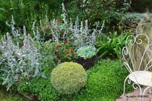 potager,chenille,pour le 18 juin,tour du jardin 046.JPG