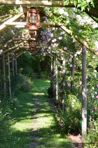 les roses,les 4 filles,jardin,Julie,coquelicots,cygnes 004.JPG