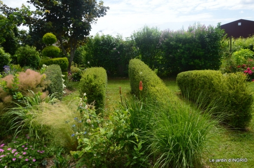 inondation,jardin,oeufs cygnes,chez Nathalie 094.JPG