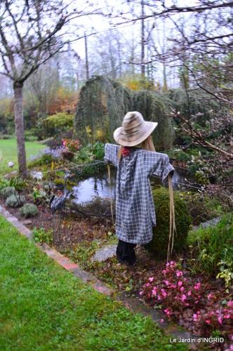 kakis,dernières fleurs,pt jardin,Julie,bassin 095.JPG