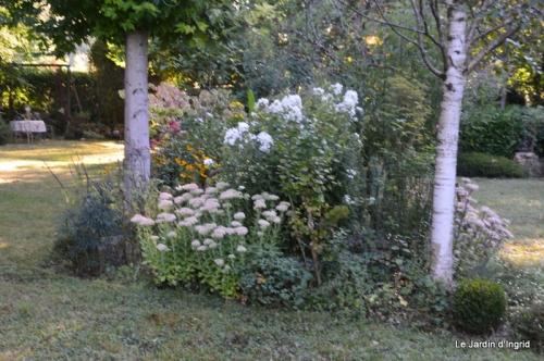 mon coin,Monique,les oies,mon jardin 013.JPG