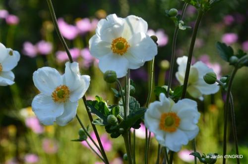Fleurettes,Dordogne,jardin 151.JPG