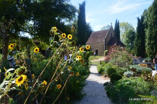 petit jardin,bouquet coings,le BOURNAT 103.jpg