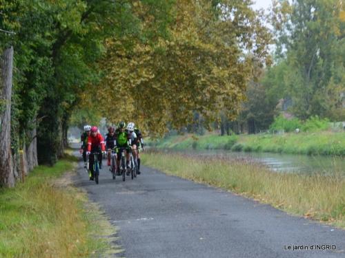 Neuvic,jardin,champignons canal 096.JPG