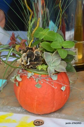 fête de la citrouille,jardinage,jardin 057.JPG