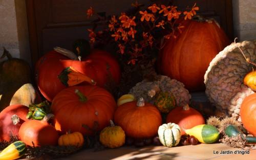 jardin octobre 075.JPG