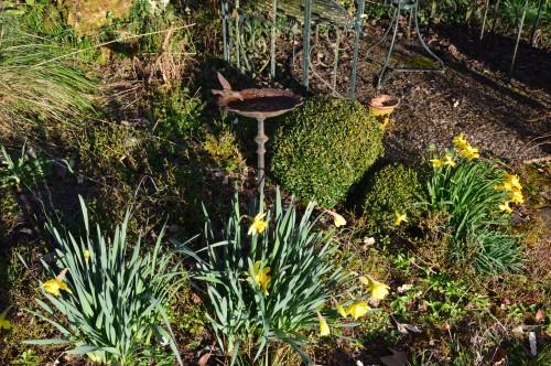 anniversaire Brigitte,fête de l'arbre Montignac,jardin 007.JPG