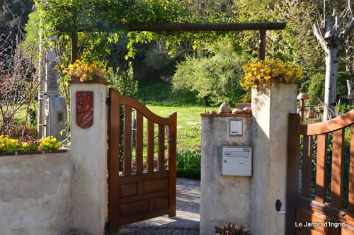 tillandsia,rainette,terreau,jardin 080.JPG