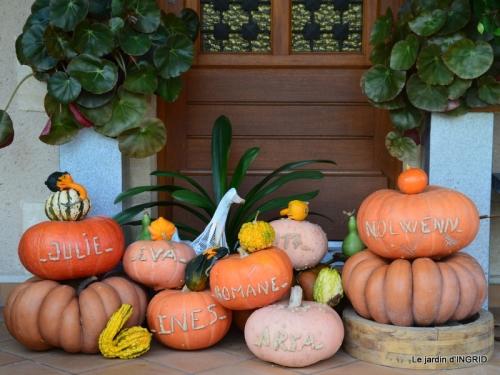 jardin automne,chez Caro avec Julie 011.JPG