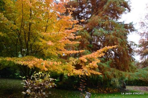 les arbres en automne,cabane 030.JPG