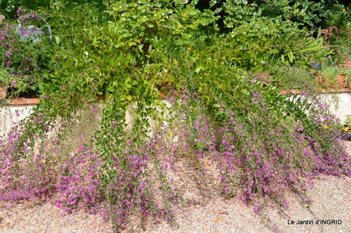 jardin pour l'automne,affiche vide jardin 108.JPG