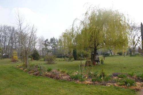 Beaumont,tulipes,primevères et autres,chez Bernadette 136.JPG