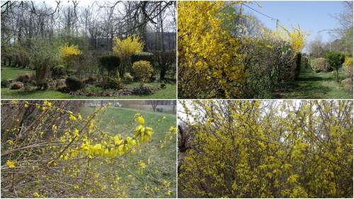 2012-03-30 30 mars.jpg