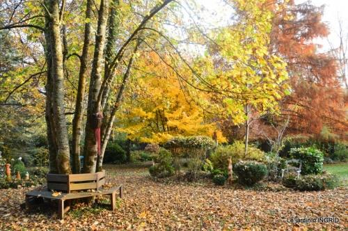 canal,automne,tonte des feuilles 063.JPG