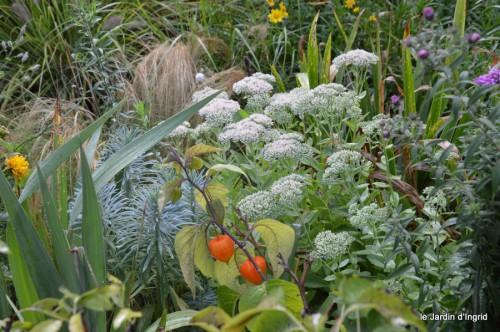 jardin,fruits,Caro,papillons,manthe religieuse,Lalinde 026.JPG