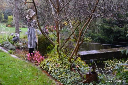 kakis,dernières fleurs,pt jardin,Julie,bassin 094.JPG