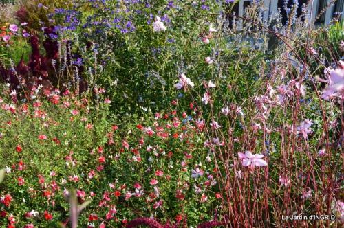 jardin Mme Perichou,grandes fleurs,bouquet,jardin 009.JPG