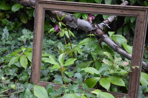 chez Maryse,pour tableaux,jardin 2013 039.JPG