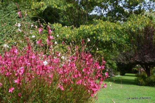 jardin ,chez Fabien,automne 087.JPG