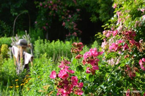 potager,chenille,pour le 18 juin,tour du jardin 078.JPG