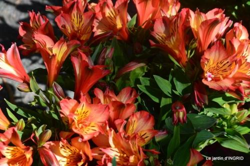 muguet,féte des fleurs Lalinde,jardin 104.JPG