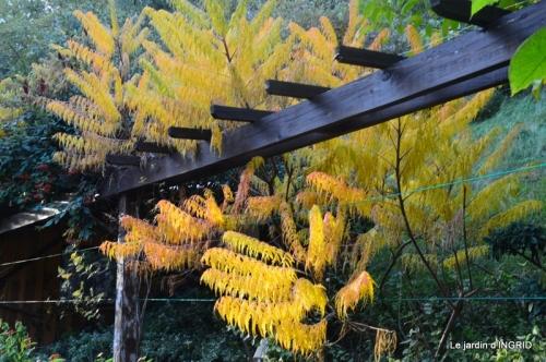 canal automne ,jardin,Ines 024.JPG