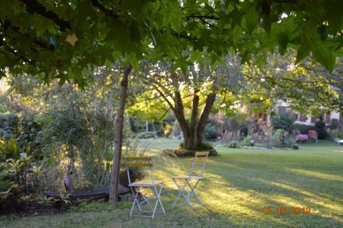 citrouilles,jardin,Combarel 033.JPG