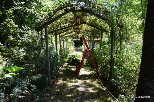 jardin ,bord de la Dordogne,cygnes 012.JPG