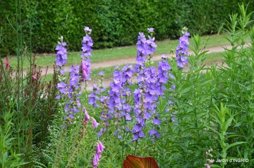 jardin,chez Bernadette,puces,cygnes,pluie 140.JPG