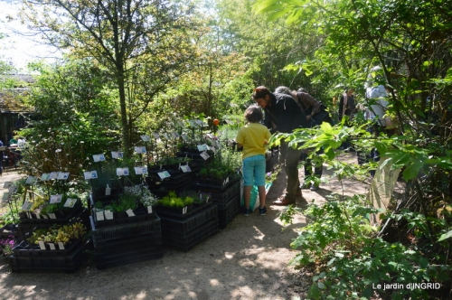 Fouleix,cygnes,Inès,jardin 100.jpg