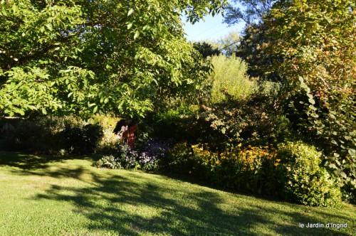 jardin,asters,fleurs blanches,chatte,rosiers roses 044.JPG
