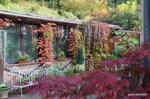 couleurs d'automne,bouquet,lune 079.JPG