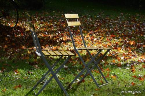 ménage automne,plectanthrus,feuillages 089.JPG