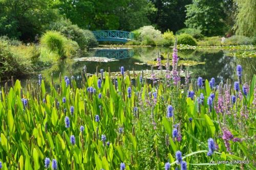 les jardins d'eau de Carsac 011.JPG