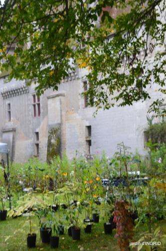 Neuvic,jardin,champignons canal 118.JPG