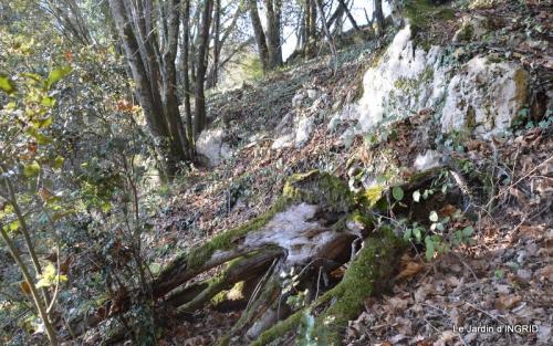 jardiland,déco noel,colline,pt houx 156.JPG