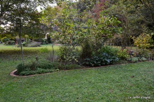 jardin octobre 099.JPG