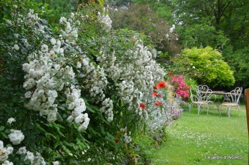 tempête colline,jardin en juin 096.JPG