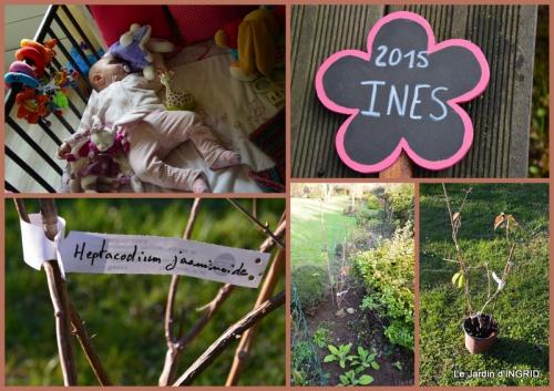 2015-12-05 pour Ines.jpg