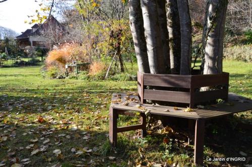 taille,arbustes,poinsettia,décos 065-001.JPG