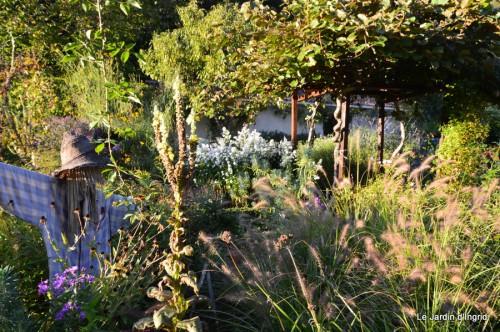 jardin début d'automne ,Sophie,rouge 097.JPG