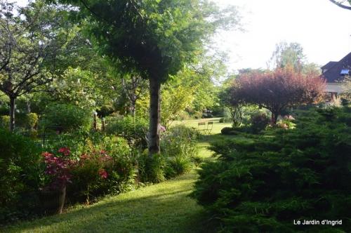 en juin jardin 147.JPG